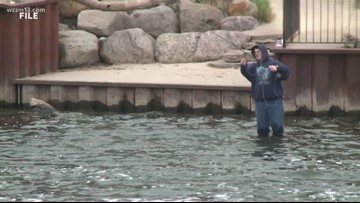 New boating and fishing laws in place to protect Michigan waters
