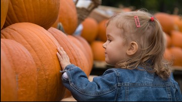 3 ways to create a playful pumpkin for kids