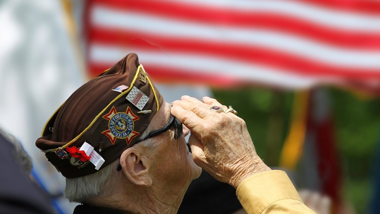 Veterans & Mental Health: Services available in West Michigan