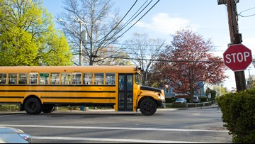 Michigan Auto Law offers school bus safety tips for drivers and students