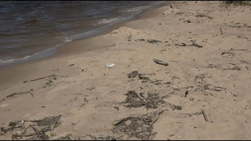Film crew to record Pere Marquette beach clean-up