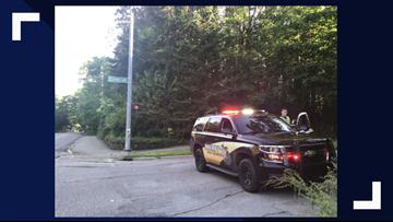 Child hit and killed by car while riding bike in Cascade Township