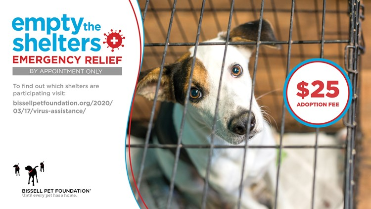 Empty the Shelters Emergency Relief