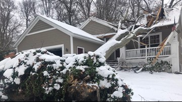 Holland couple 'just lucky to be alive' after massive tree falls through house