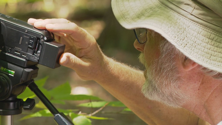 Bob McAndrews takes his video camera on every spider hunt.