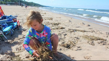 What does it take to keep Lake Michigan beaches clean?