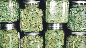 First recreational marijuana store opens in Big Rapids Wednesday