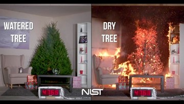 Christmas trees cause hundreds of fires each year