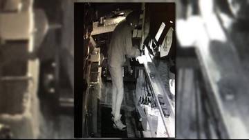 Suspect wanted in Ionia County bar burglary