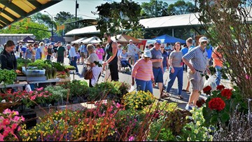Holland Farmers Market opens for the summer