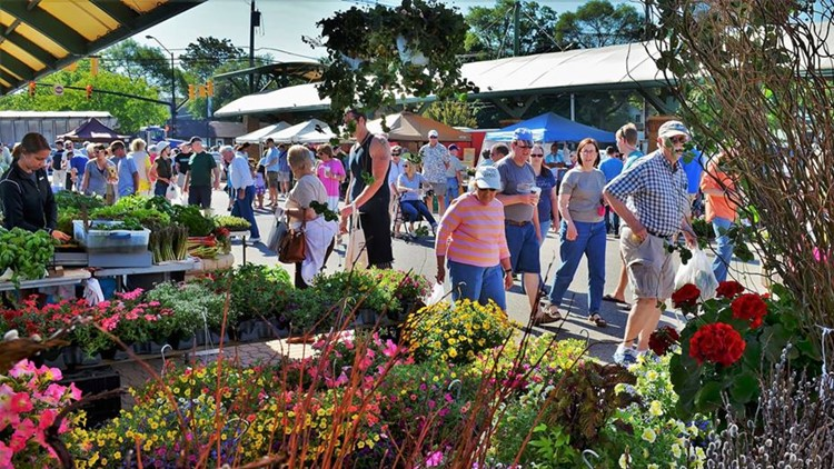 Holland Farmers Market to launch new program for kids this week