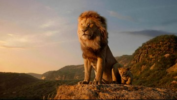 Box Office Buzz: Stuber, Lion King & more