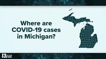 Map: Where are COVID-19 cases in Michigan?