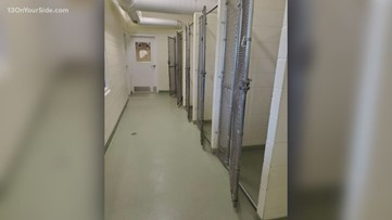 Ionia County Animal Shelter is empty