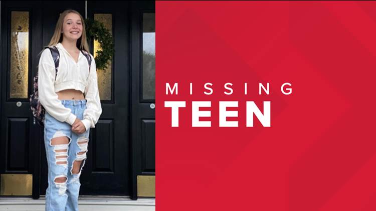 MSP searching for missing Lakeview teen