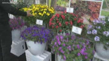 Tour the Home and Garden Show with Greenthumb