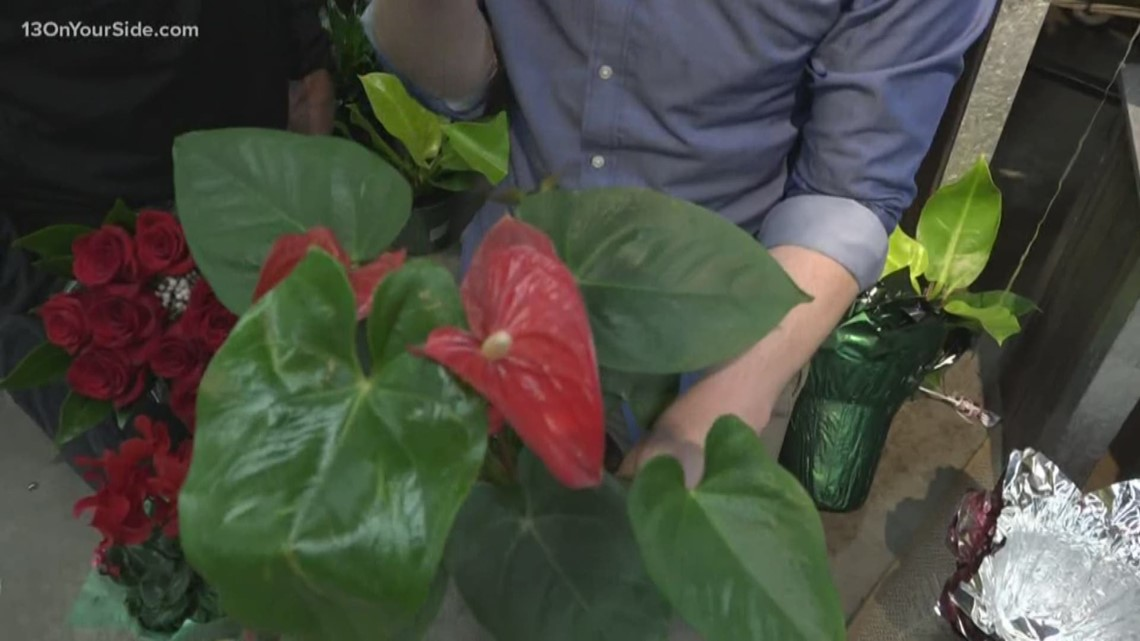 Greenthumb: Red plants for February