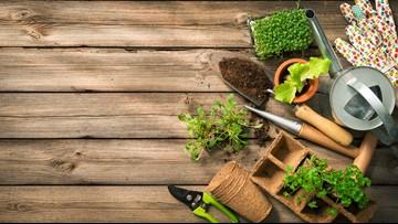 Greenthumb: Controlling those pesky pests!