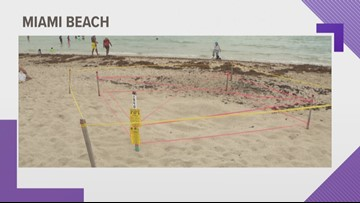 Woman accused of using a stake to poke at, stomp on a Florida sea turtle nest