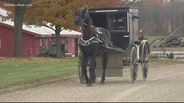 Buggy bills: Horse-drawn carriages need lights, Michigan lawmakers say