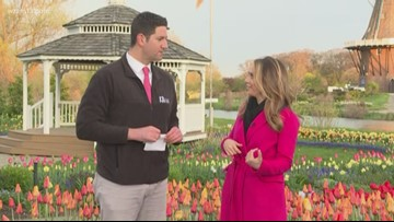 Ginger Zee is back to grand marshal Tulip Time parade