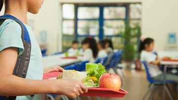 Zeeland business pays off school lunch debt at 5 Michigan districts