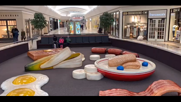 Woodland Mall auctioning off 'Bacon and Eggs' play area pieces for charity