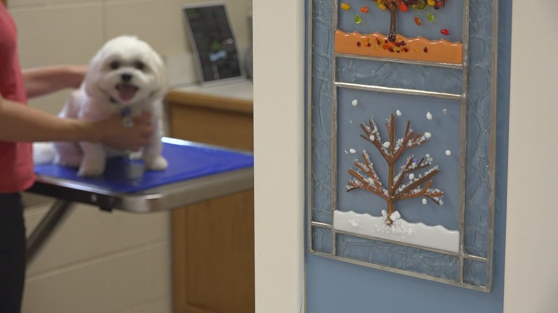 West Michigan veterinary clinics experience backlog due to pandemic
