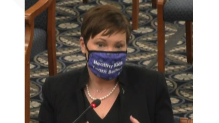 State Health Department Director Elizabeth Hertel testifies before state Senate committee